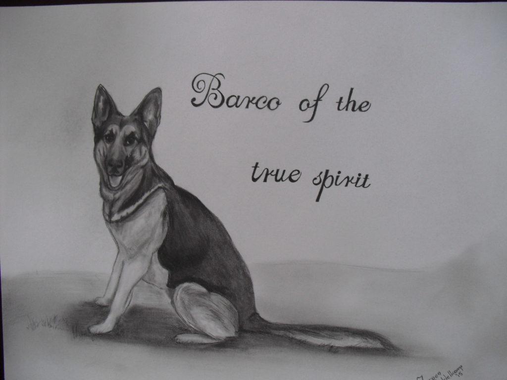 Barco of the true spirit herdershond pentekening portrettekening jeroen middelkamp jmillustraties