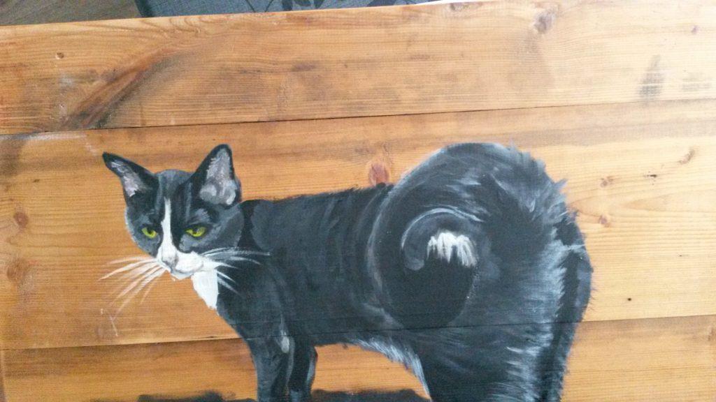 Poes; jeroen middelkamp; jmillustraties; buitenschilderij; acrylverf; kattenschilderij;
