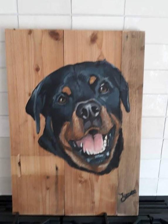 Schilderij op hout, hond schilderij, hond op hout, rottweiler, jmillustraties, jeroen middelkamp, schilderij voor buiten, buitenschilderij, eigen hond, acrylverf